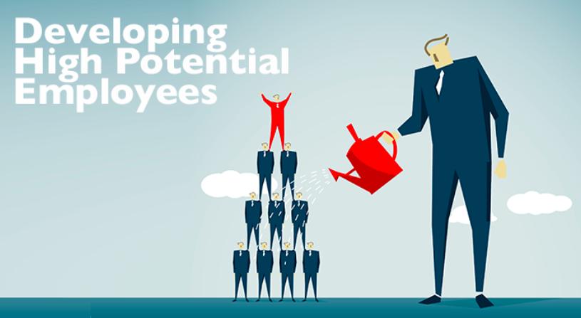¿Sabes identificar empleados de alto potencial en tu empresa?